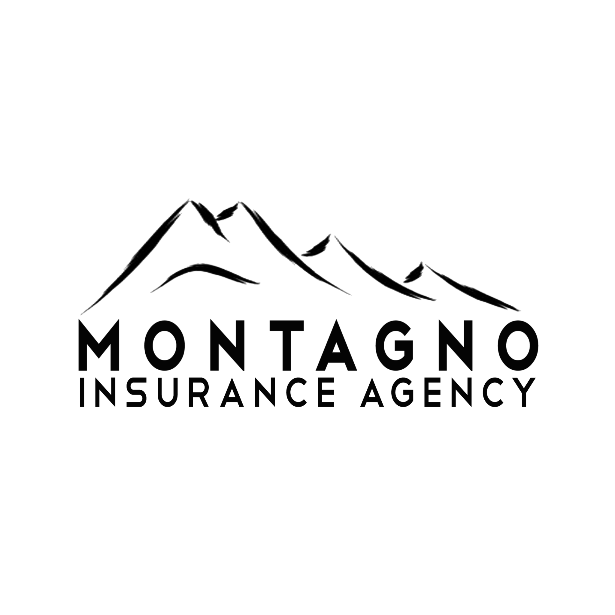 Montagno Insurance Inc Icon