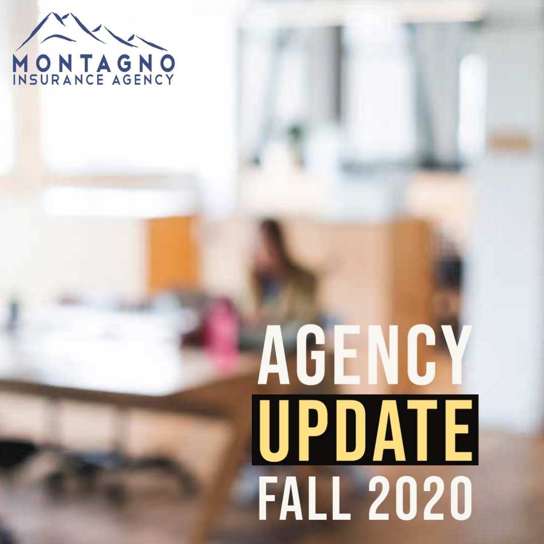 Agency update Fall 2020